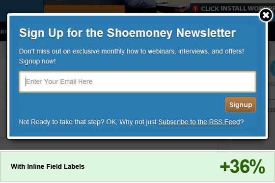 オプトインページ-Shoemoney-blog-改善後