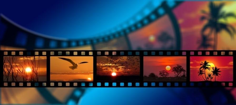 プログラム-動画化