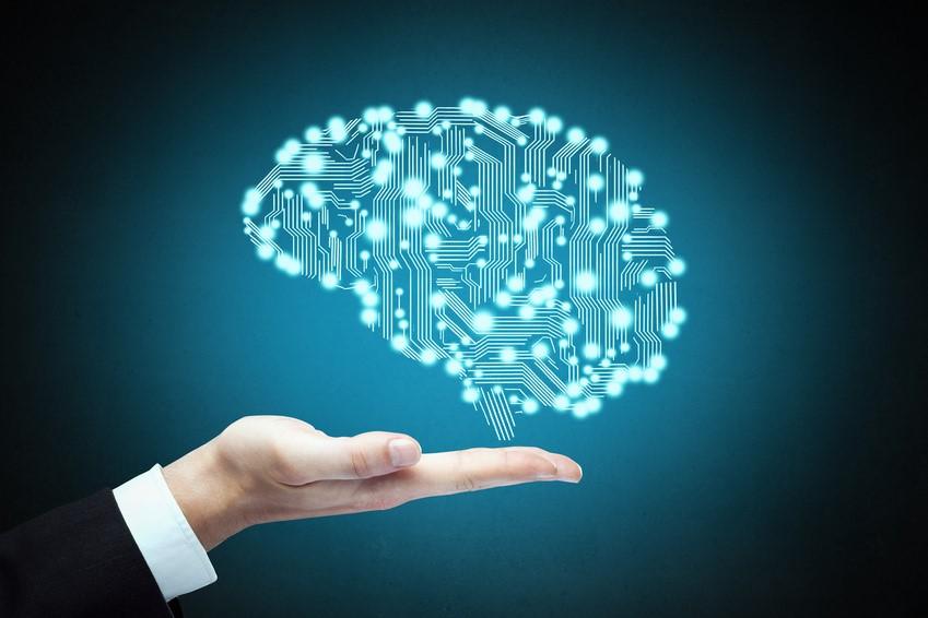 手と脳-マーケティング心理学
