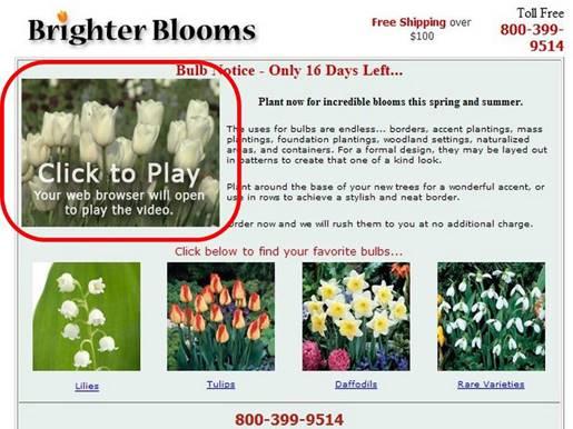 Brighter-Bloomsの事例2