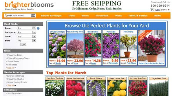 Brighter-Bloomsの事例1